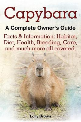 Capybara. Facts & Information - Lolly Brown