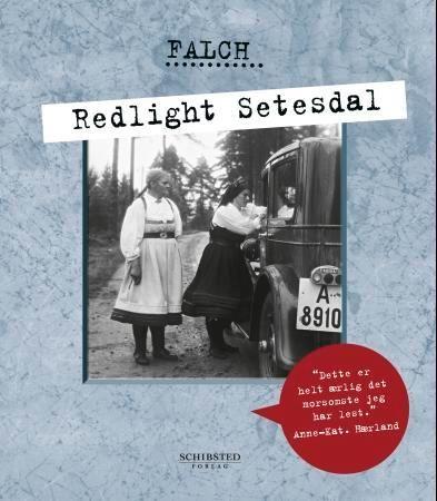 Redlight Setesdal PDF ePub