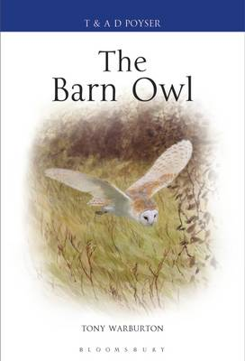 The Barn Owl - Tony Warburton