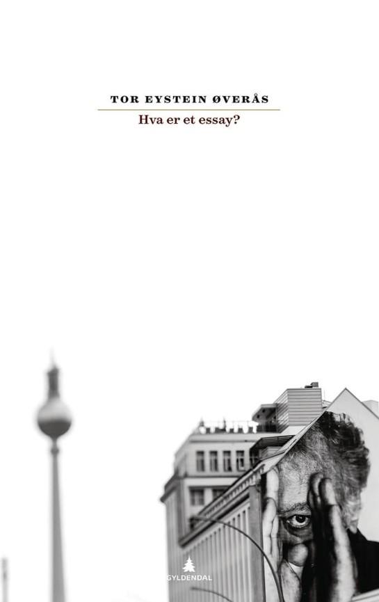 Hva er et essay? PDF ePub