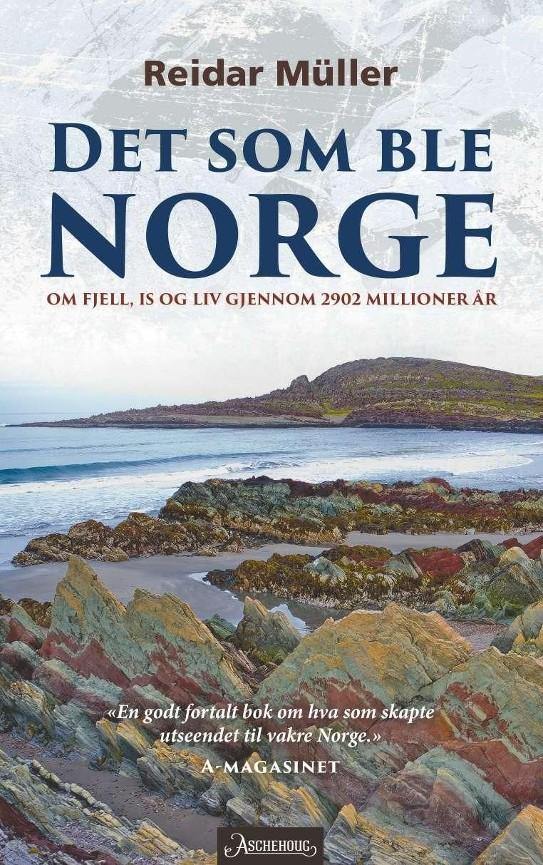 Det som ble Norge PDF ePub