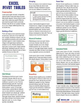 Excel Pivot Tables Laminated Tip Card - Bill Jelen