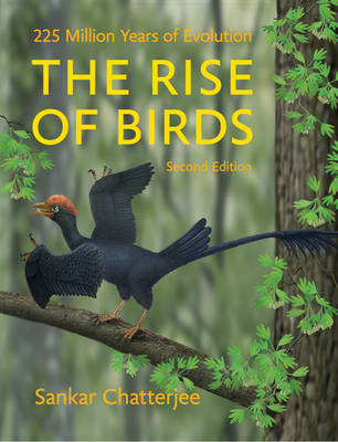 The Rise of Birds - Sankar Chatterjee
