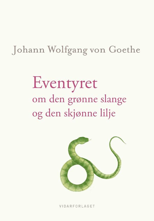Eventyret om den grønne slange og den skjønne lilje PDF ePub