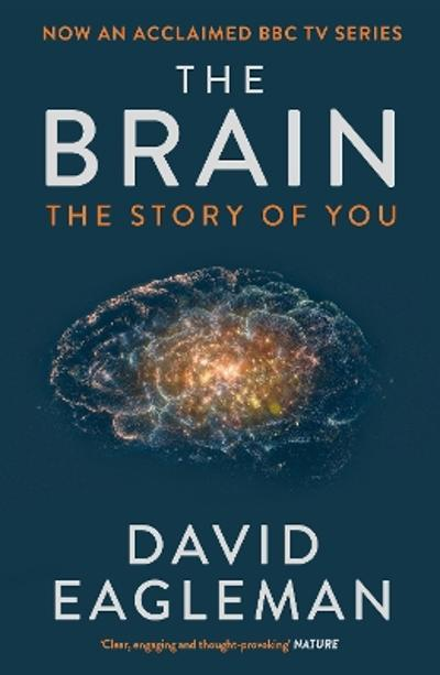 The Brain - David Eagleman