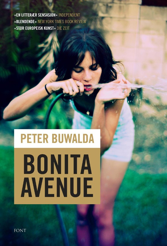 Bonita Avenue PDF ePub