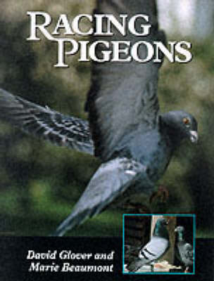 Racing Pigeons - David Glover
