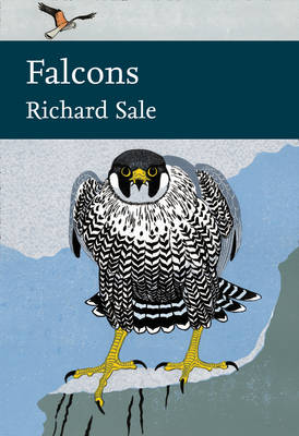 Falcons - Richard Sale