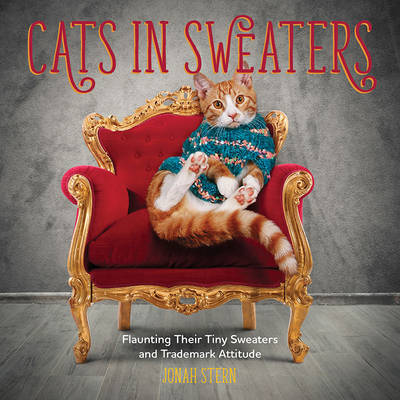 Cats in Sweaters - Jonah Stern
