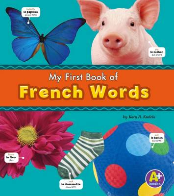 Bilingual Picture Dictionaries Pack A of 6 - Katy R. Kudela