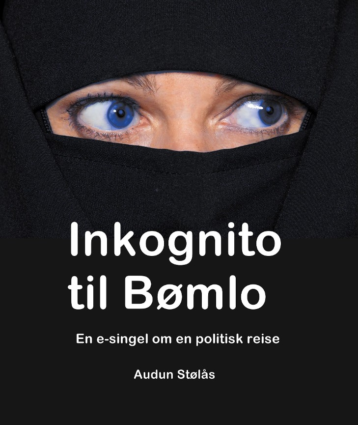 Inkognito til Bømlo PDF ePub
