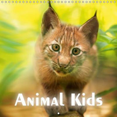 Animal Kids 2017 - PhotoPlace