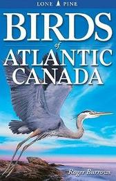 Birds of Atlantic Canada - Roger Burrows Ted Nordhagen Gary Ross