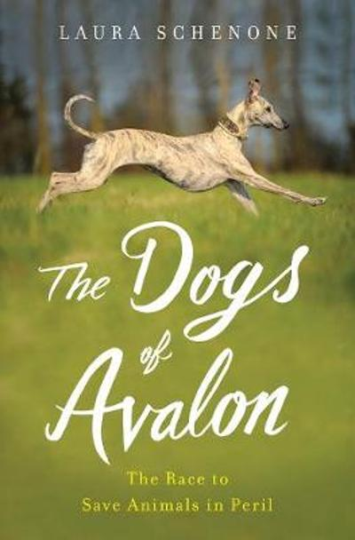 The Dogs of Avalon - Laura Schenone