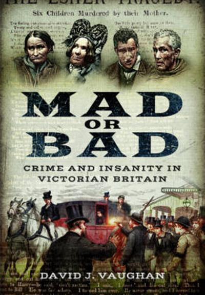 Mad or Bad: Crime and Insanity in Victorian Britain - ,David Vaughan