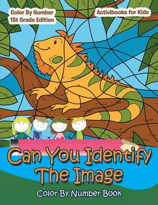 Can You Identify the Image Color by Number Book - Activibooks For Kids