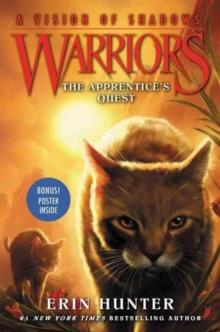 The apprentice's quest - Erin Hunter