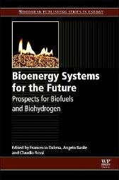 Bioenergy Systems for the Future - Francesco Dalena Angelo Basile Claudio Rossi