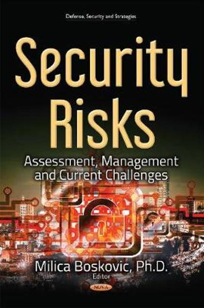 Security Risks - Milica Boskovic