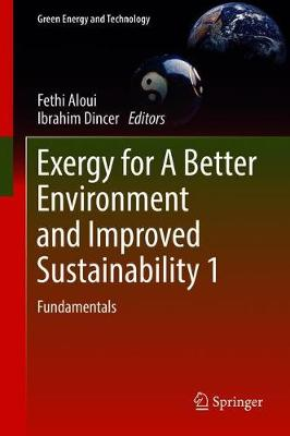 Exergy for A Better Environment and Improved Sustainability, Volume 1 - Fethi Aloui