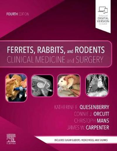 Ferrets, Rabbits, and Rodents - Katherine Quesenberry