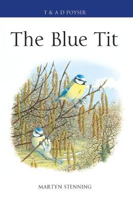 The Blue Tit - Martyn Stenning