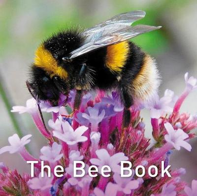 The Bee Book - Jo Byrne