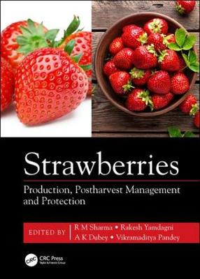Strawberries - Radha Mohan Sharma