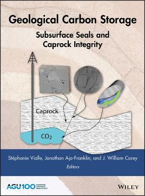 Geological Carbon Storage - Vialle