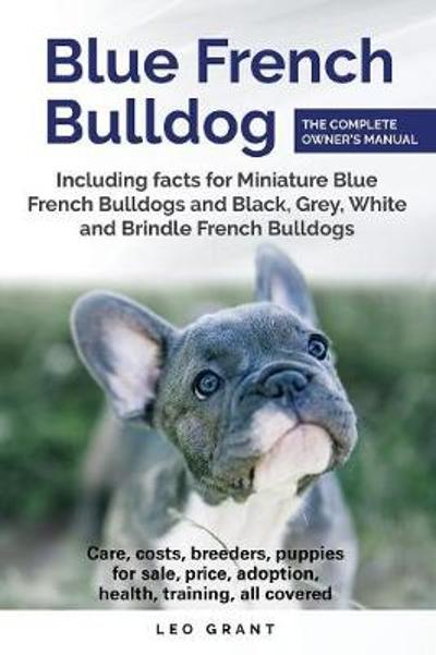Blue French Bulldog - Leo Grant