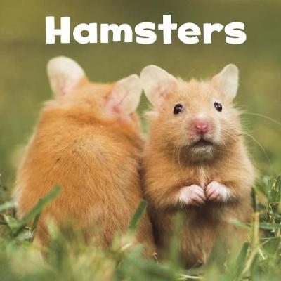 Hamsters - Lisa J. Amstutz