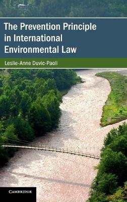 Cambridge Studies on Environment, Energy and Natural Resources Governance - Leslie-Anne Duvic-Paoli