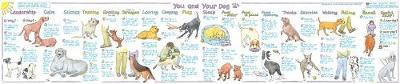 You and Your Dog -