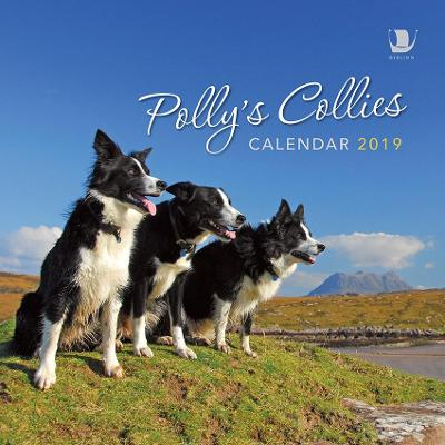 Polly's Collies Calendar 2019 - Polly Pullar
