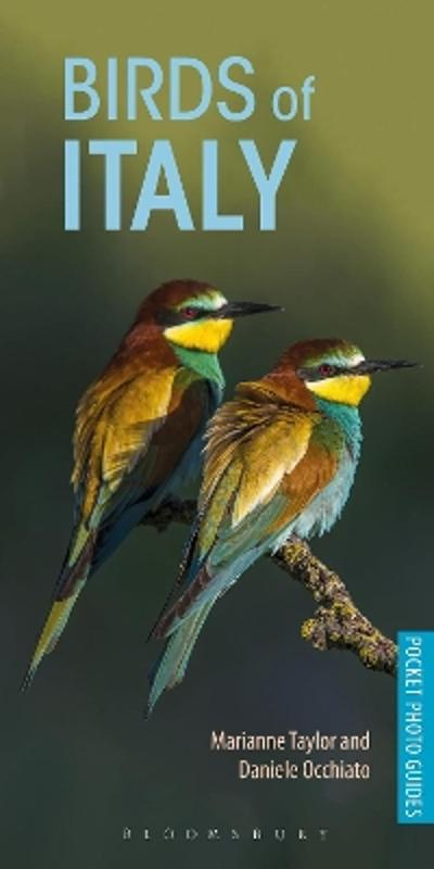 Birds of Italy - Marianne Taylor