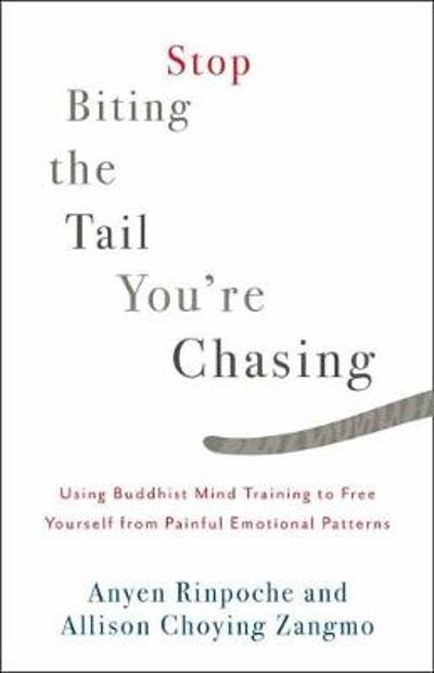 Stop Biting the Tail You're Chasing - Anyen Rinpoche