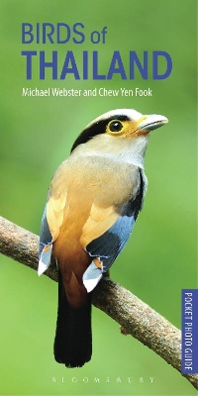 Birds of Thailand - Michael Webster