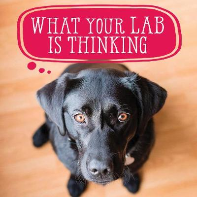 What Your Lab Is Thinking - Willow Creek Press