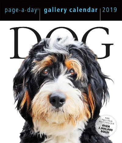 2019 Dog Gallery Page-A-Day Gallery Calendar - Workman Publishing