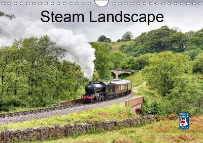 Steam Landscape 2019 - David Ireland