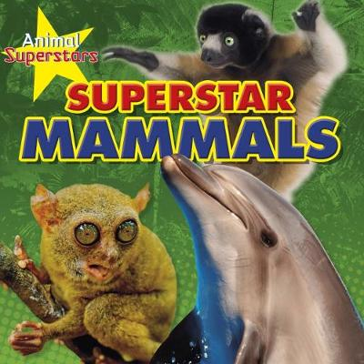 Animal Superstars Pack A of 4 - Louise Spilsbury
