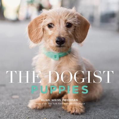 The The Dogist Puppies - Elias W Friedman