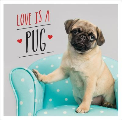 Love is a Pug - Charlie Ellis