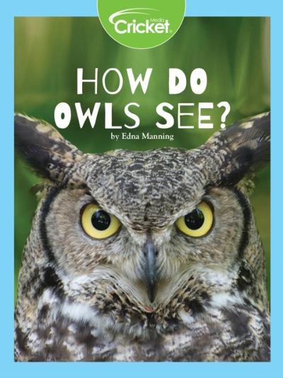 How Do Owls See? - Edna Manning