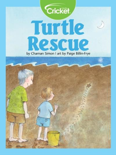 Turtle Rescue - Charnan Simon