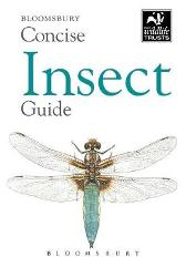 Concise Insect Guide - Bloomsbury