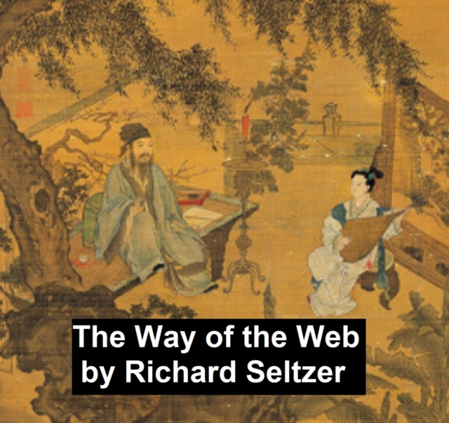 Way of the Web - Richard Seltzer