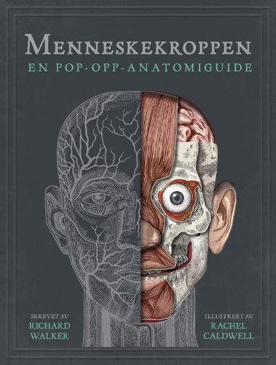 Menneskekroppen - Richard Walker