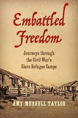 Embattled Freedom - Amy Murrell Taylor