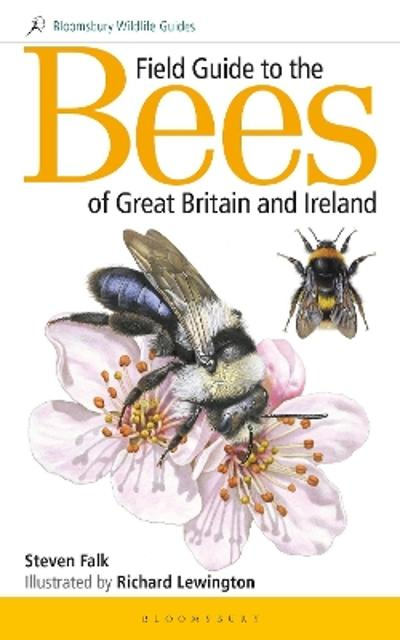 Field Guide to the Bees of Great Britain and Ireland - Steven Falk